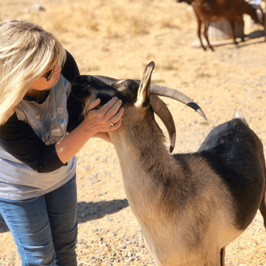 Connie Edwards McGaughy with goat at Charlie's Acres Farm Animal Sanctuary in Sonoma California