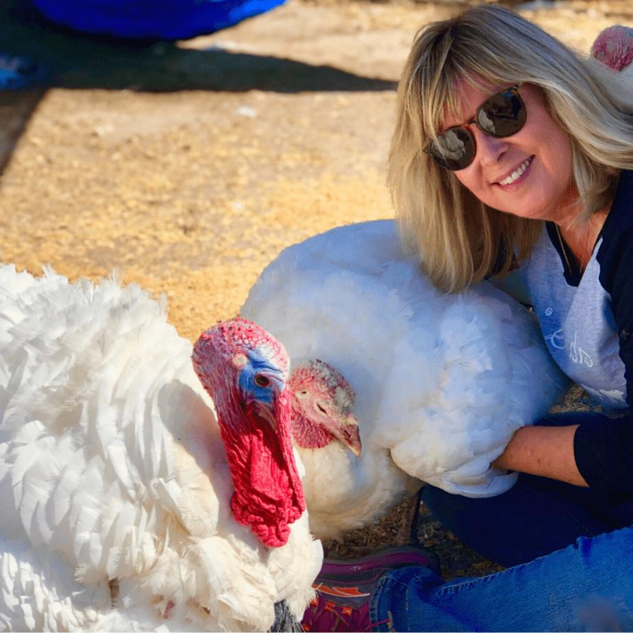 Connie Edwards McGaughy with turkeys at Charlie's Acres Farm Animal Sanctuary in Sonoma California
